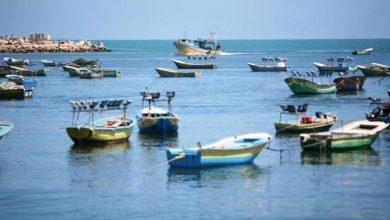 Photo of الساعة الخامسة صباحًا..  نقيب الصيادين: إعادة فتح بحر غزة أمام الصيادين غداً الثلاثاء
