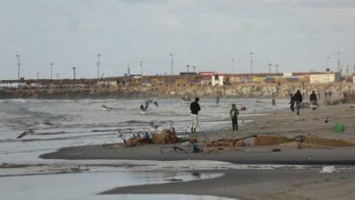 "Photo of ""جودة البيئة"": سيتم إحالة سارقي رمل وصخر وزفزف شاطئ بحر غزة للقضاء"