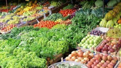 Photo of طالع قائمة أسعار الخضراوات والدجاج المحدثة في أسواق غزة ليوم الخميس