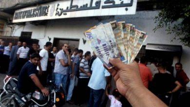 "Photo of التنمية"" بغزة توضح مستجدات حول  موعد  صرف شيكات الشؤون الاجتماعية"