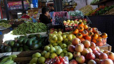 Photo of القائمة المحدثة لأسعار الخضروات والدجاج في أسواق غزة  03 فبراير 2021