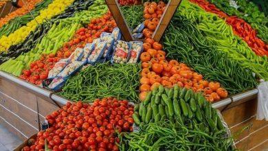 Photo of القائمة المحدثة لأسعار الخضروات والدجاج في أسواق غزة