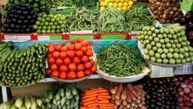 Photo of أسعار الخضروات واللحوم في أسواق قطاع غزة