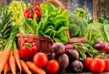 Photo of أسعار الخضروات والفواكه واللحوم في أسواق غزة اليوم الخميس