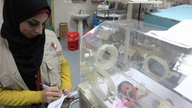 Photo of بشرى سارة تتعلق بزراعة أطفال الأنابيب المجانية في غزة