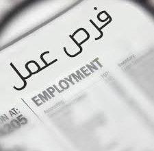 Photo of رابط تسجيل وتحديث بيانات في مكتب العمل والـ UNDP للخريجين والعمال العاطلين عن العمل